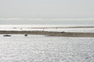 La réserve naturelle du Banc d'Arguin